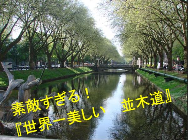 """""""世界一美しい並木道""""が素敵すぎる!デュッセルドルフ"""