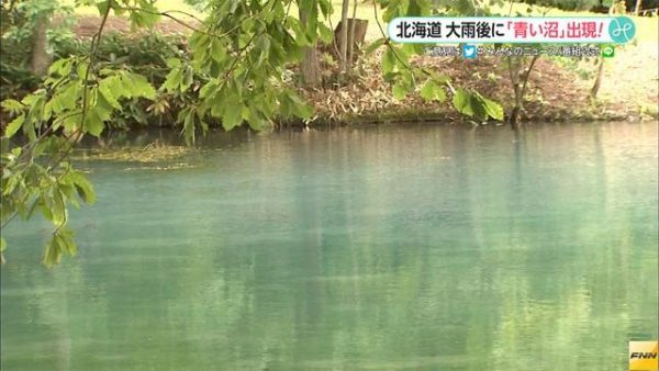 【青い沼】北海道・富良野に出現 台風10号が残した奇跡