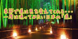 【放感あるよね!】一度は通ってみたい日本の「道」10選