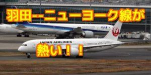 日航、羽田―NY線復活航 NYが近い~!