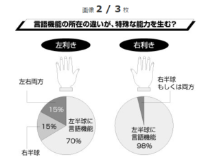 %e5%b7%a6%e8%84%b3