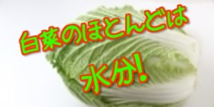 旬ですよ~万能白菜の効果!
