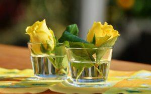 glass-1659096_640